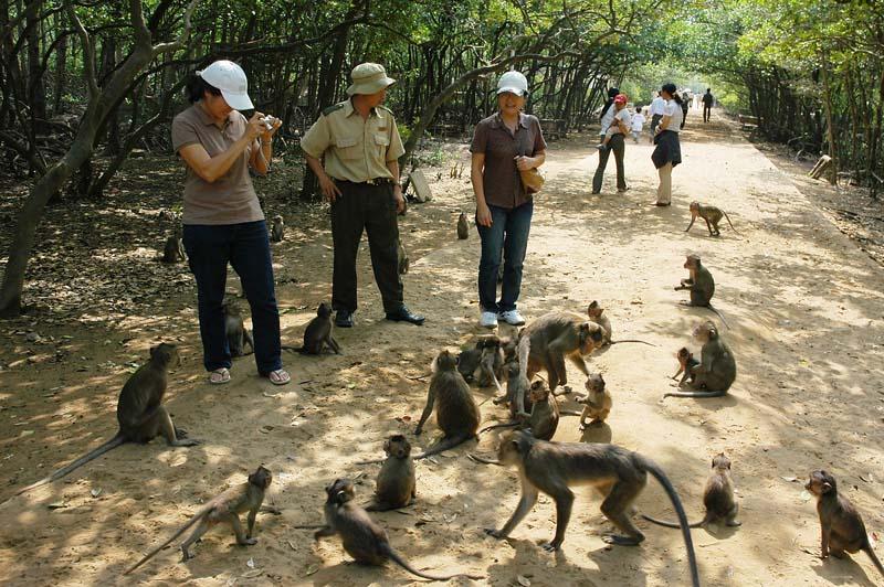 Southern Viet Nam tour
